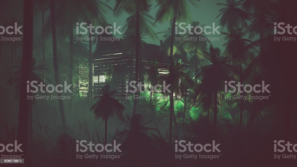 Abandoned old wooden cabin in remote palm tree jungle. stock photo
