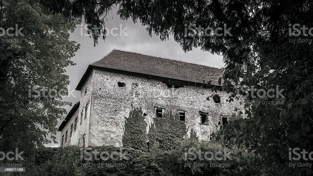 Abandoned overgrown European castle royalty-free stock photo
