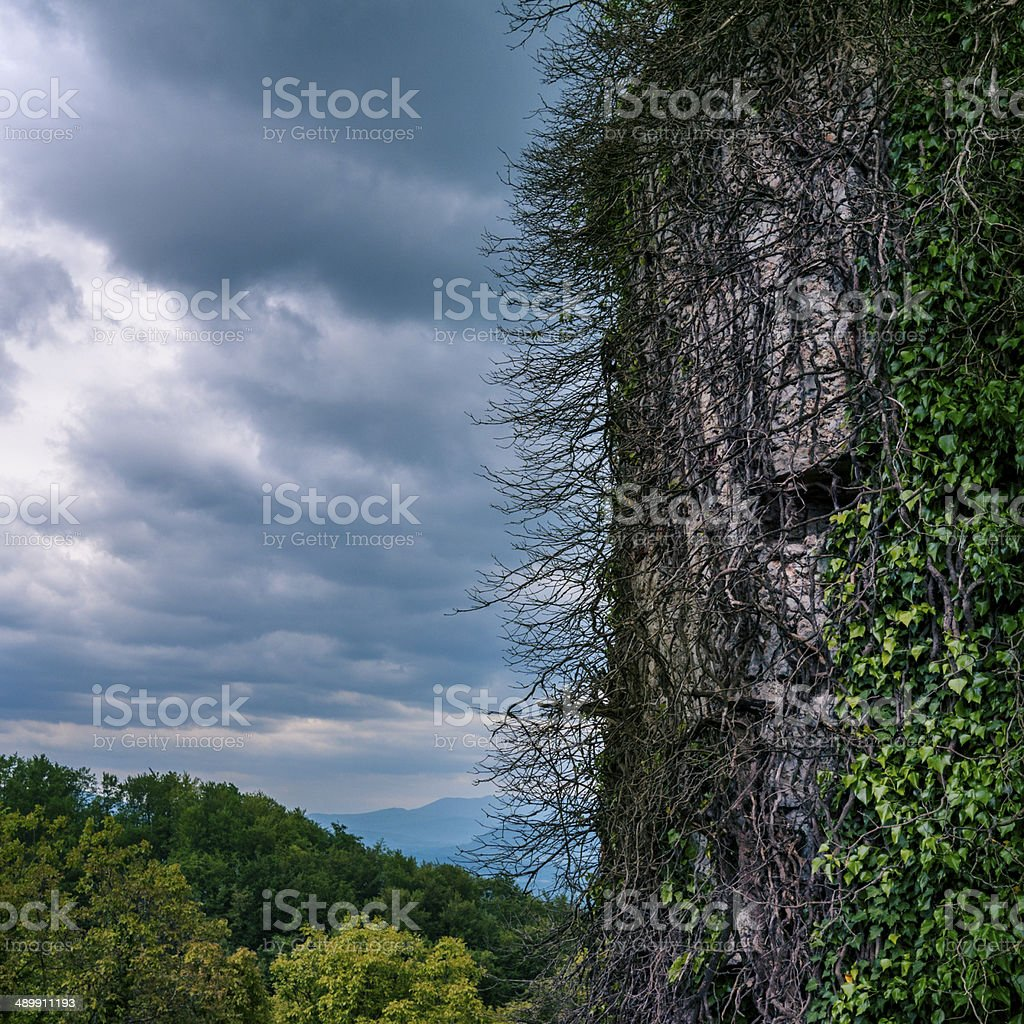 Abandoned overgrown European castle tower royalty-free stock photo