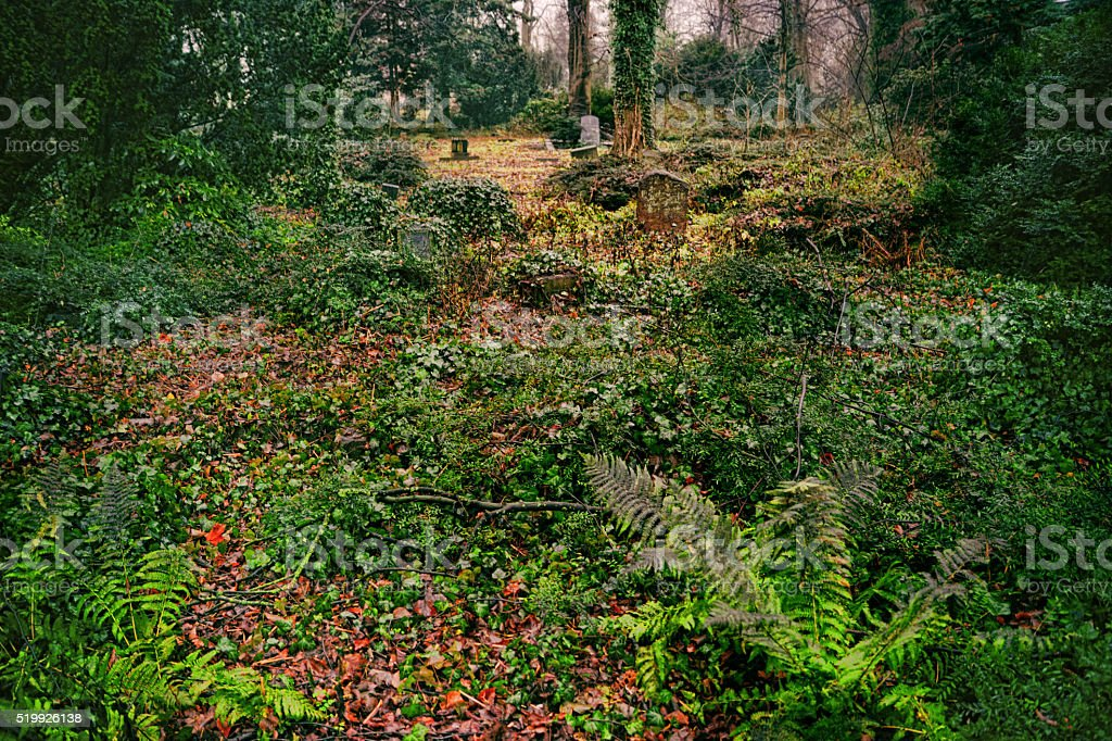 Abandoned overgrown grave in the woods stock photo