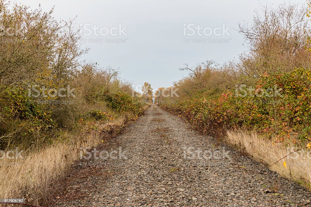 Abandoned railroad now gravel road disappearing into distance stock photo