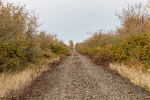 Abandoned railroad now gravel road disappearing into distance