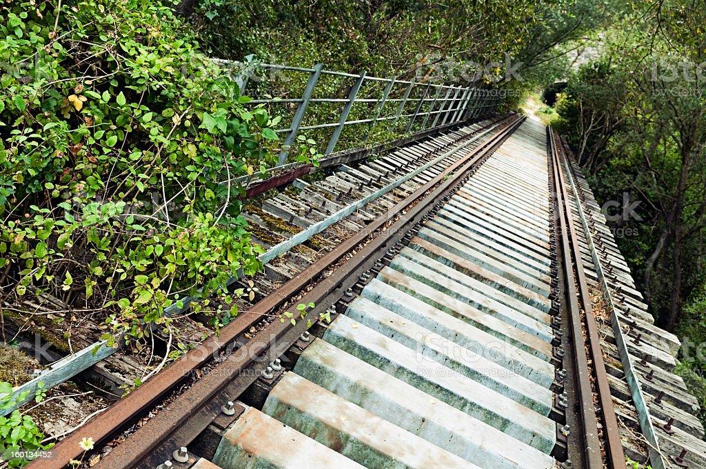 Opuszczony Kolej żelazny Most zbiór zdjęć royalty-free