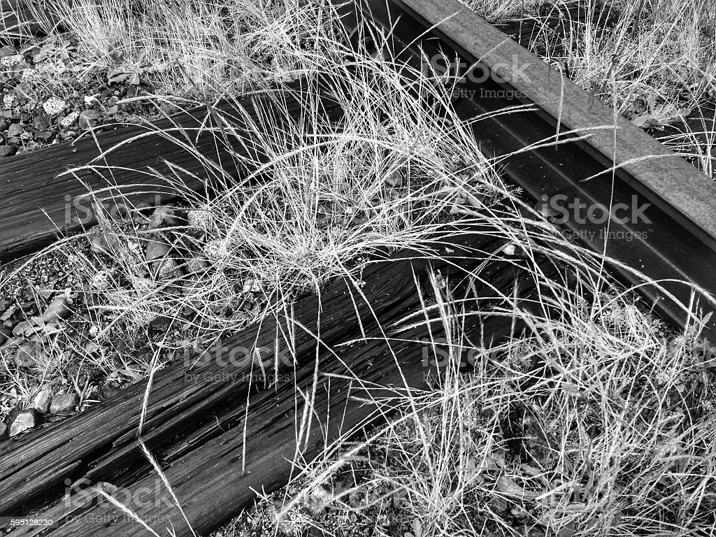 Abandoned Railway Tracks in Black and White stock photo