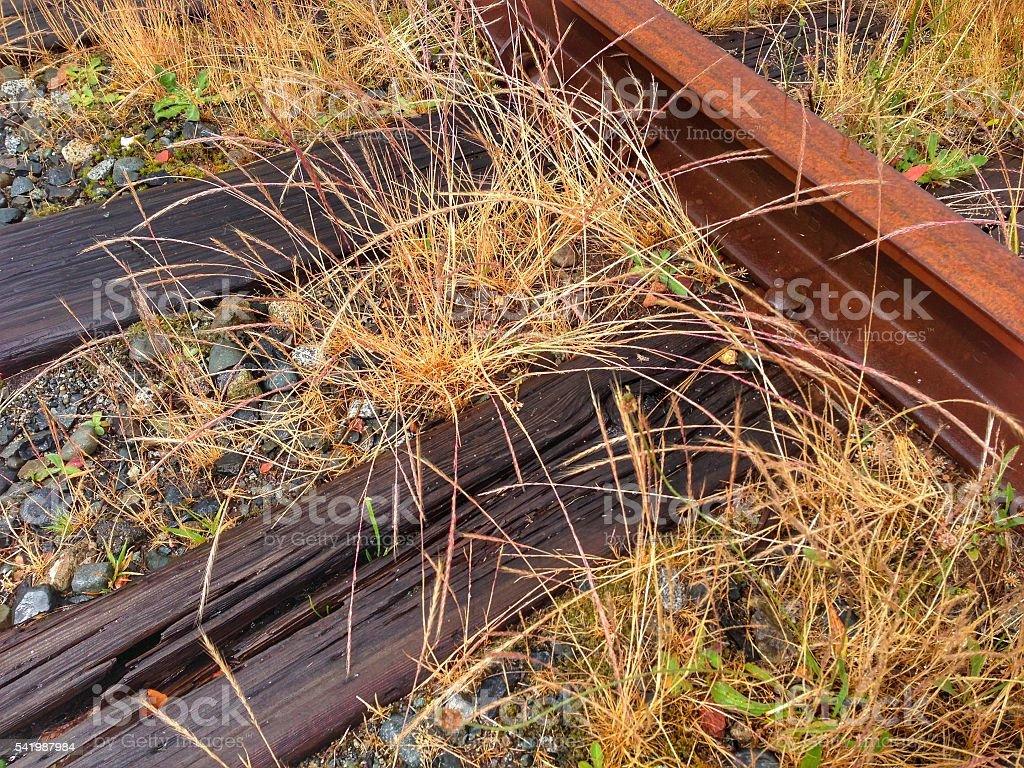 Abandoned Railway Tracks stock photo