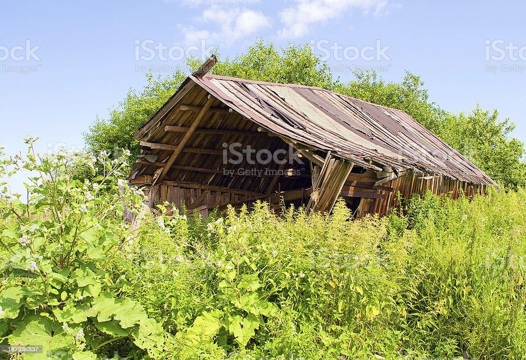 Abandoned shack stock photo