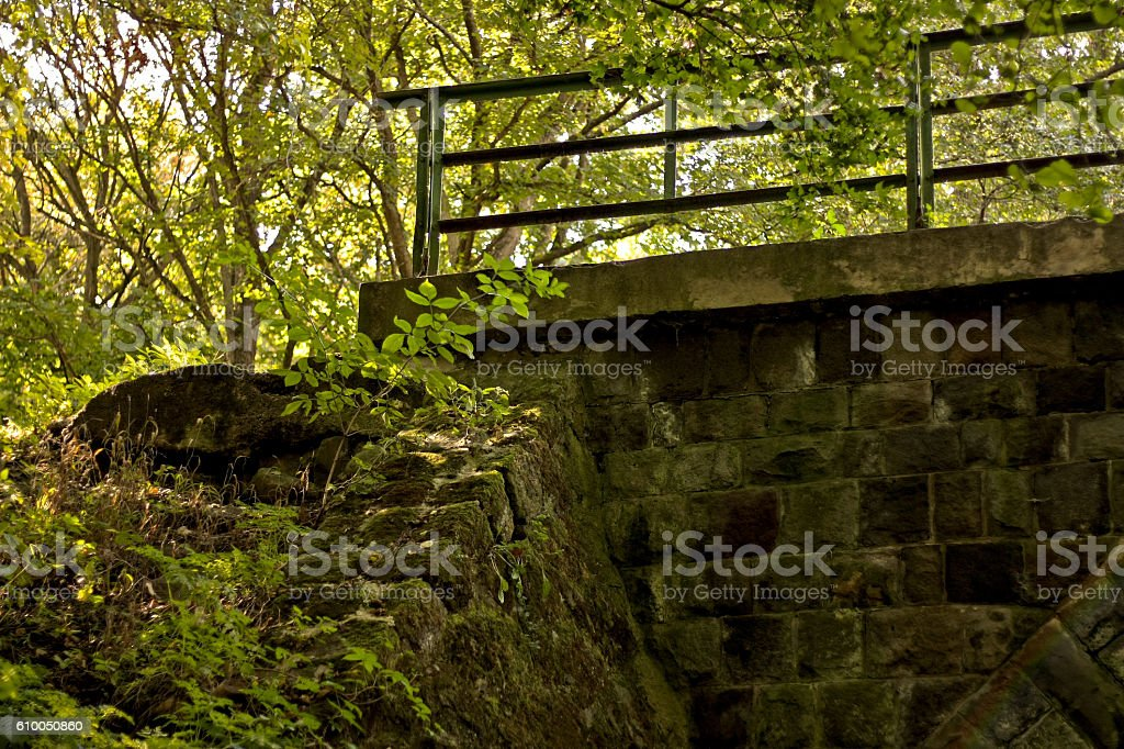 Abandoned stone bridge in deep forest stock photo