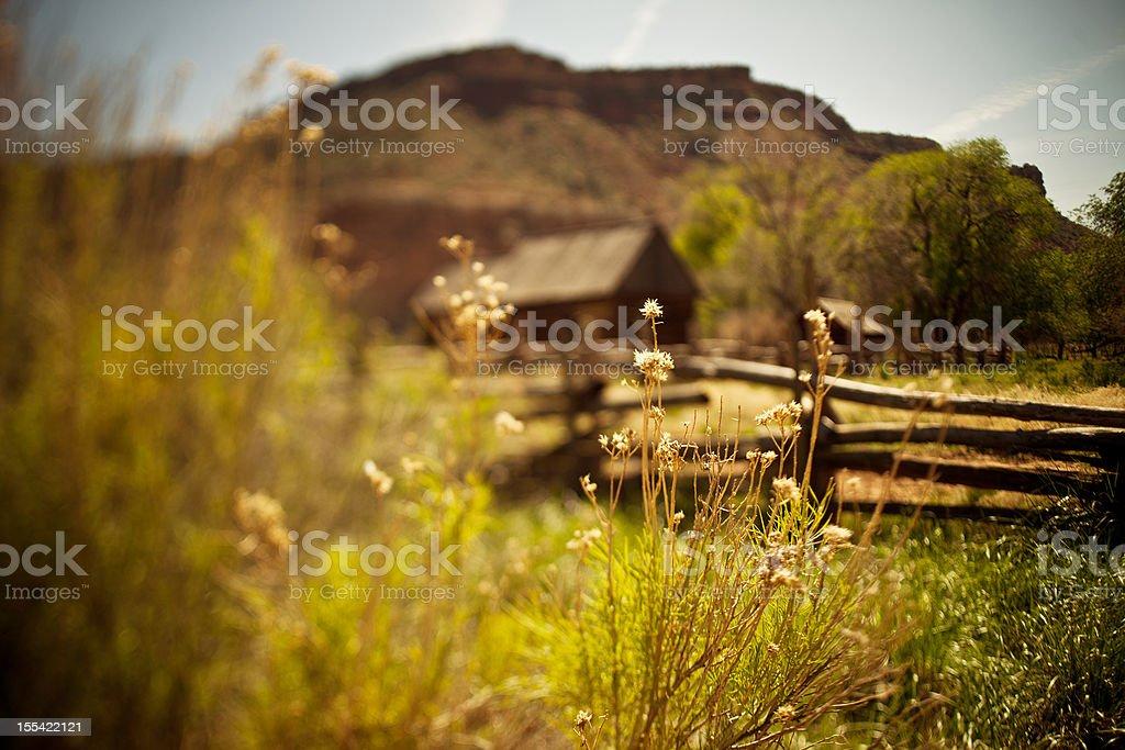Abandoned Utah ranch royalty-free stock photo