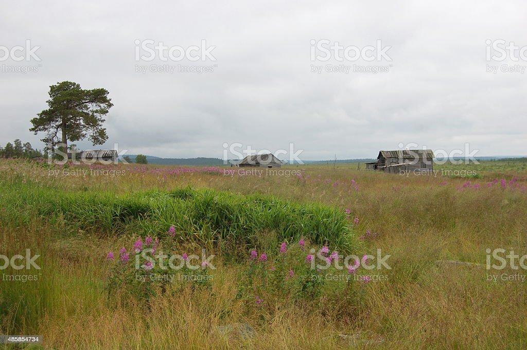 Abandoned village on the Kola Peninsula, Russia. stock photo
