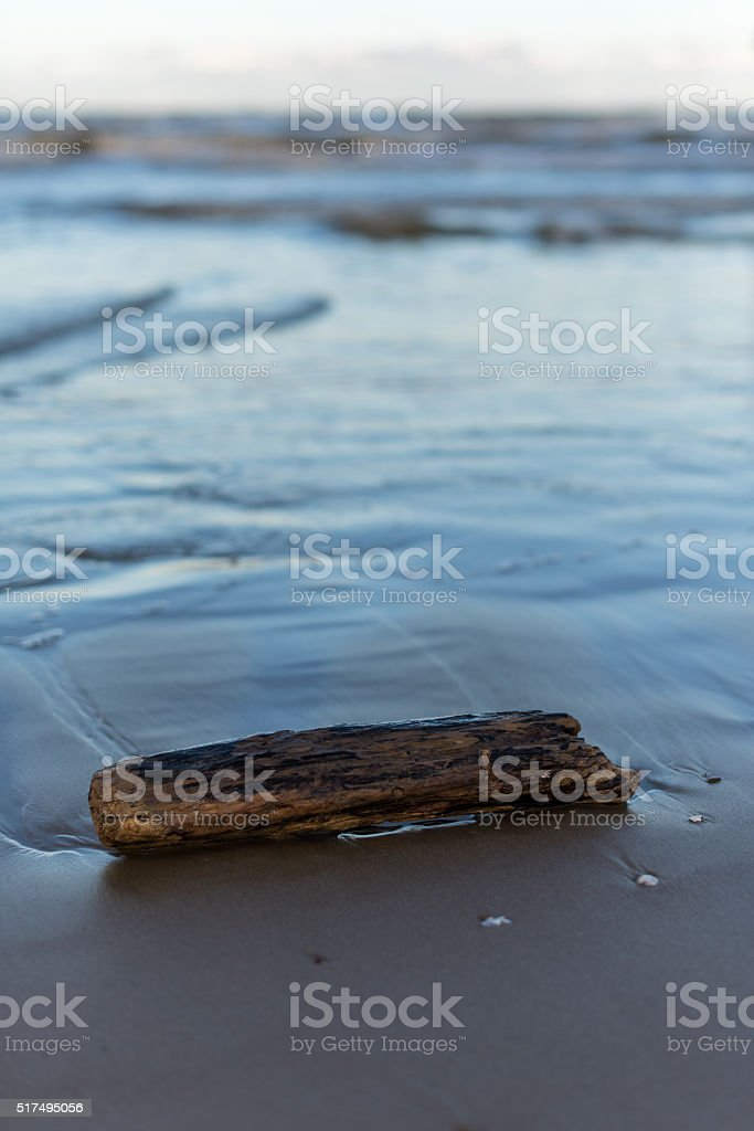 Abandoned wood on the beach stock photo