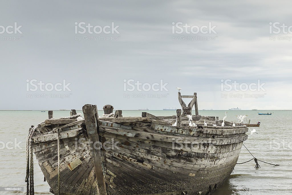 Abandoned wooden fishing boat with egret royalty-free stock photo