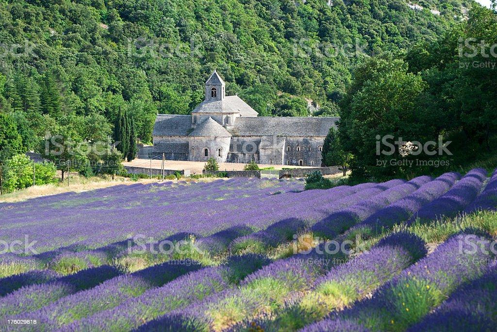 Abbay de Senanque, France stock photo