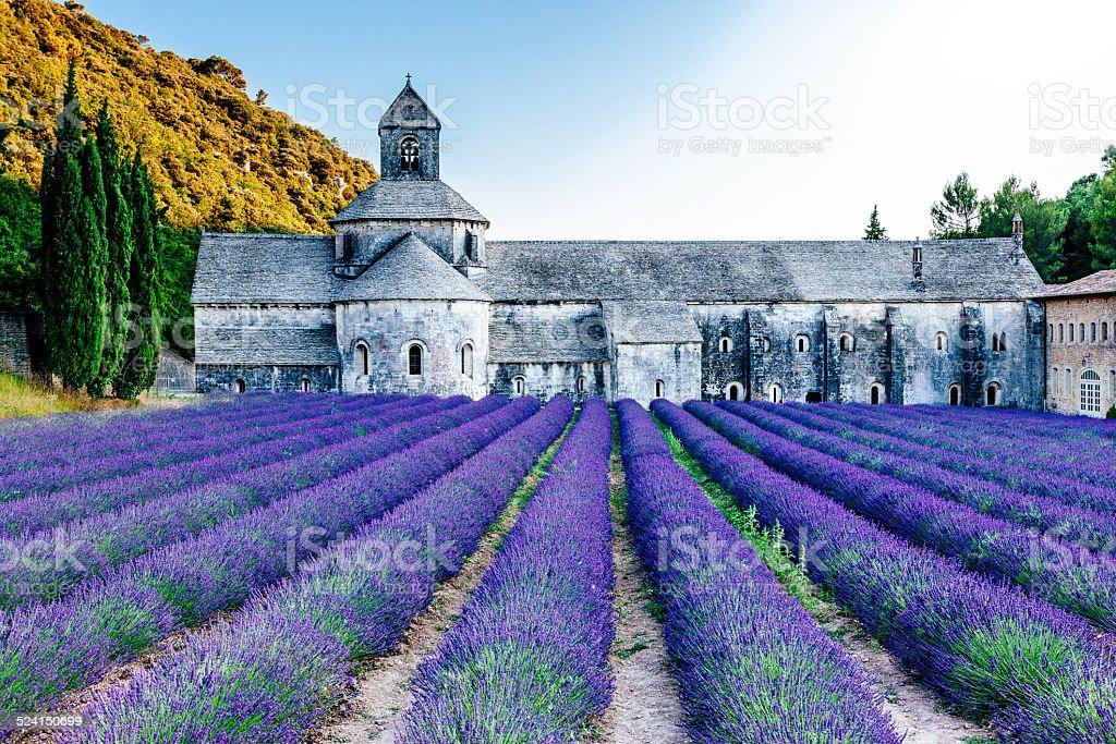 Abbaye Notre-Dame de Senanque, Provence stock photo