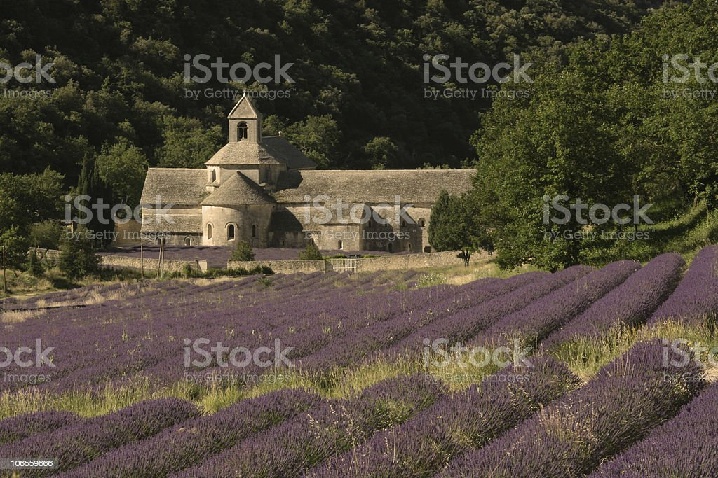Abbey of Senanque with Lavender Fields stock photo