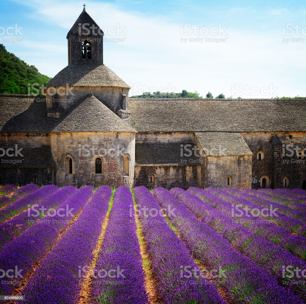 Abbey Senanque and Lavender field, France stock photo
