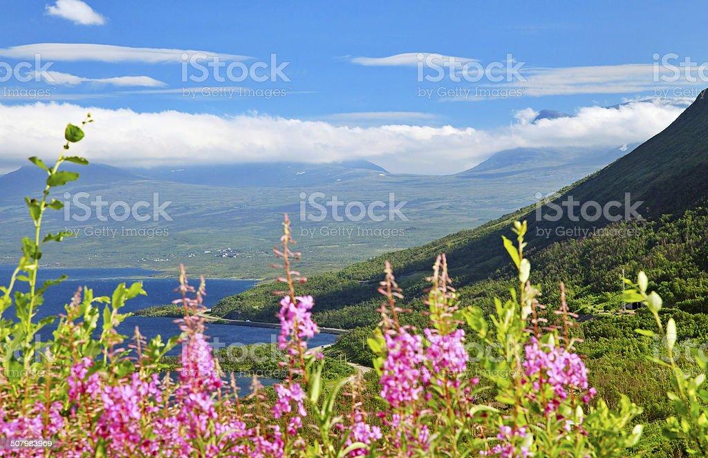 Abisko National park, Sweden stock photo