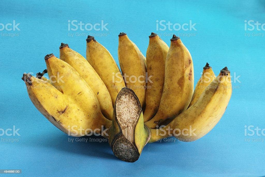 Abnormal Twin Bananas stock photo