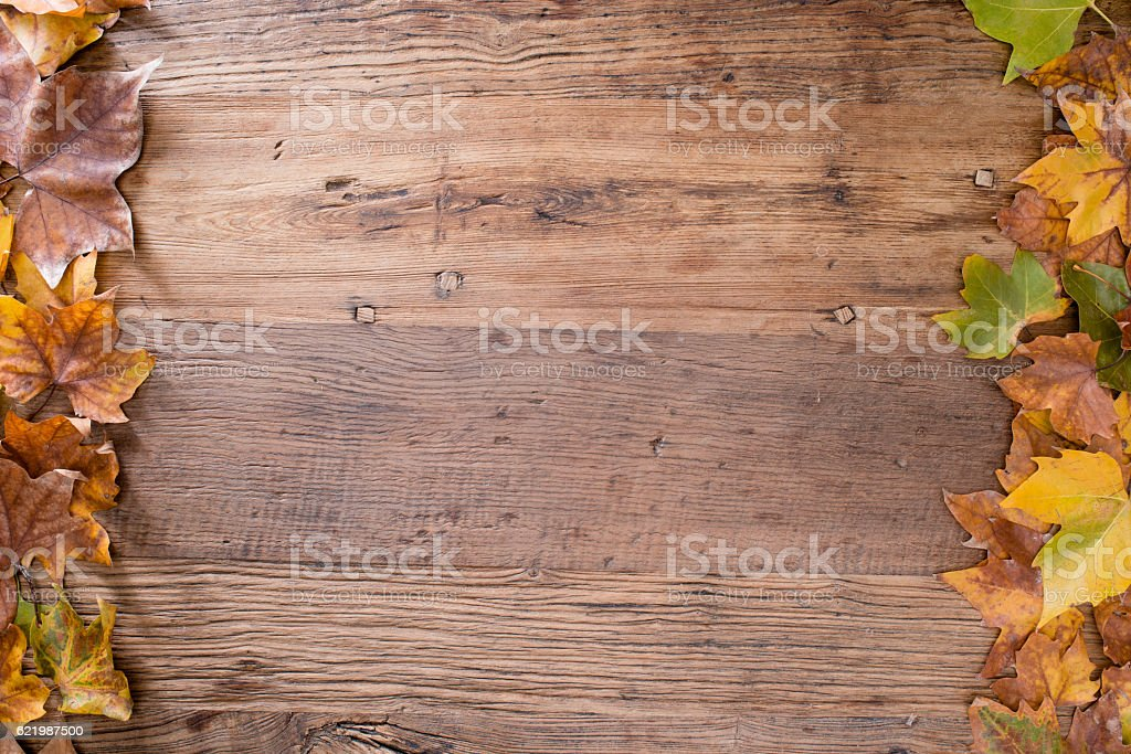 above flatlay copyspace in frame autumn leaves in wood table stock photo