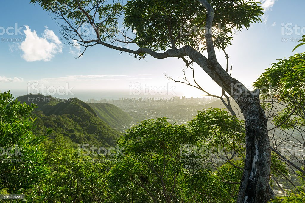 Above Honolulu on Wa'ahila Ridge stock photo