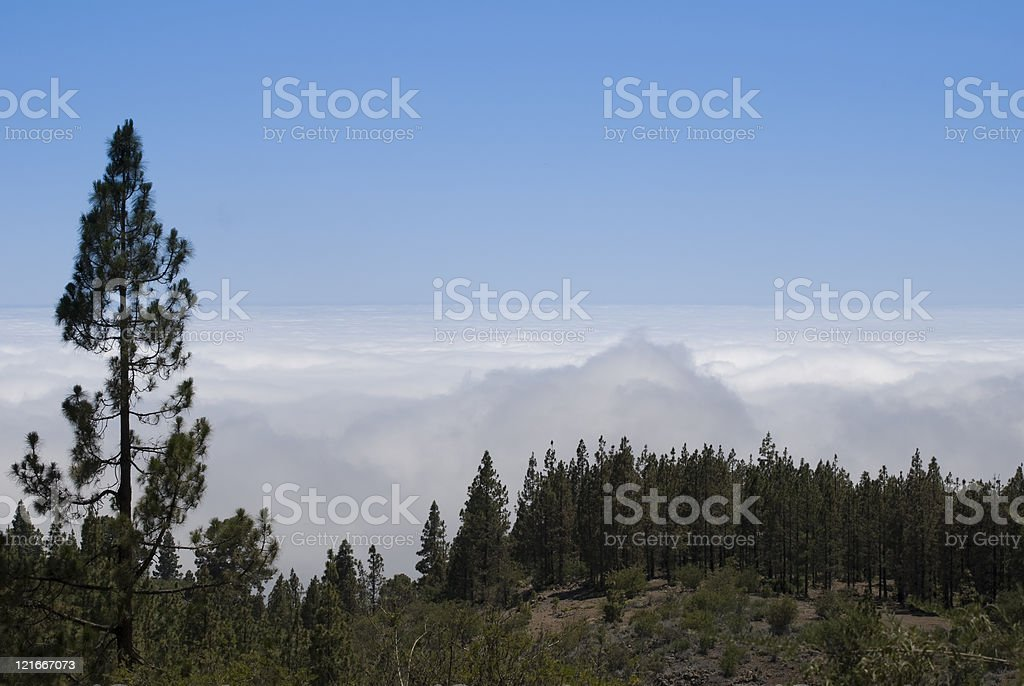 Above the clouds, Teide National Park, Tenerife (Canary Islands) stock photo