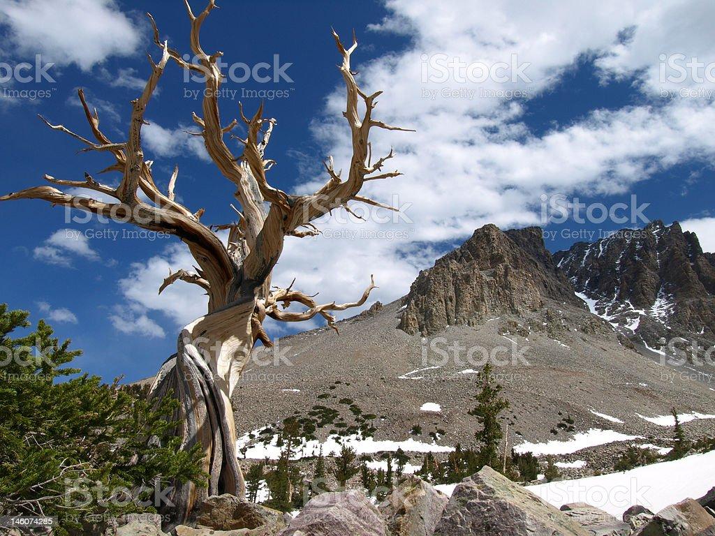 above the desert stock photo