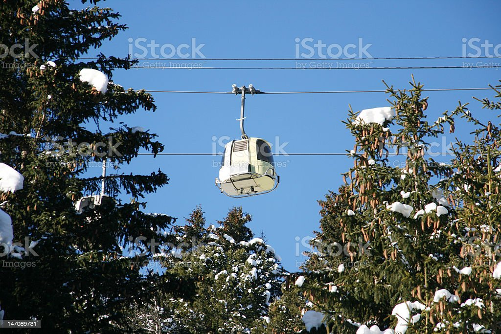 Above the Trees royalty-free stock photo