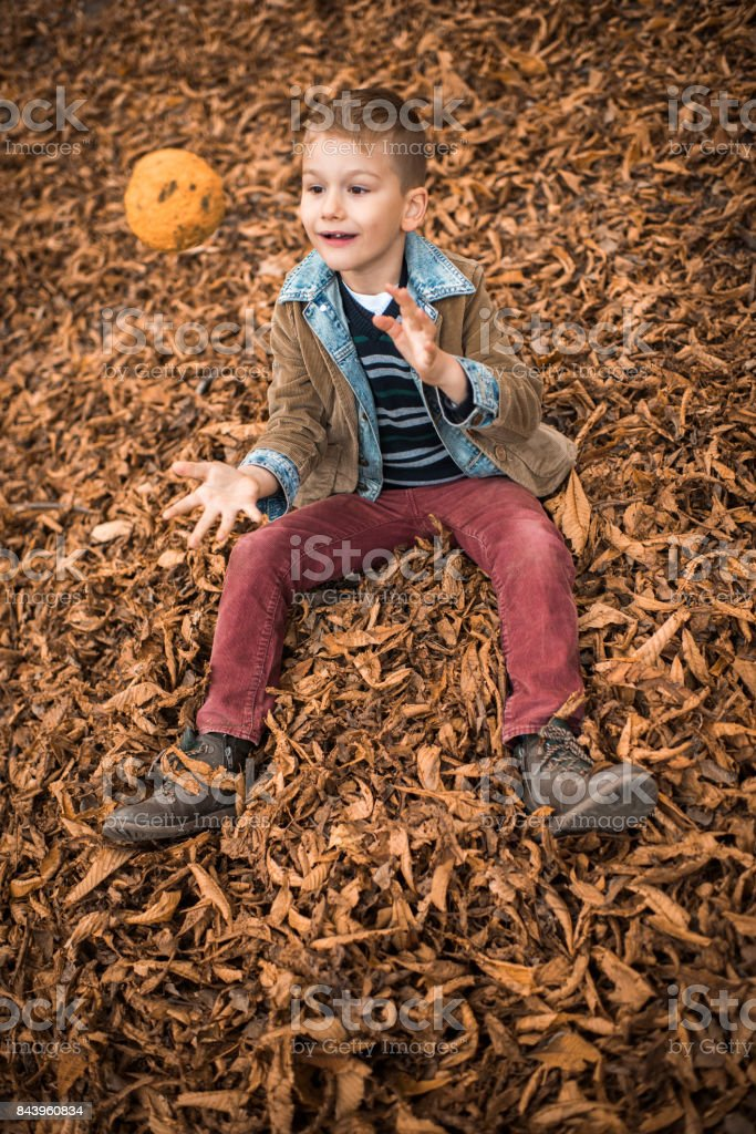 Above view of smiling kid having fun while playing in autumn leaves. stock photo