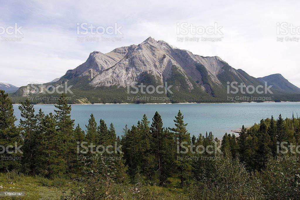 Abraham Lake #8 royalty-free stock photo