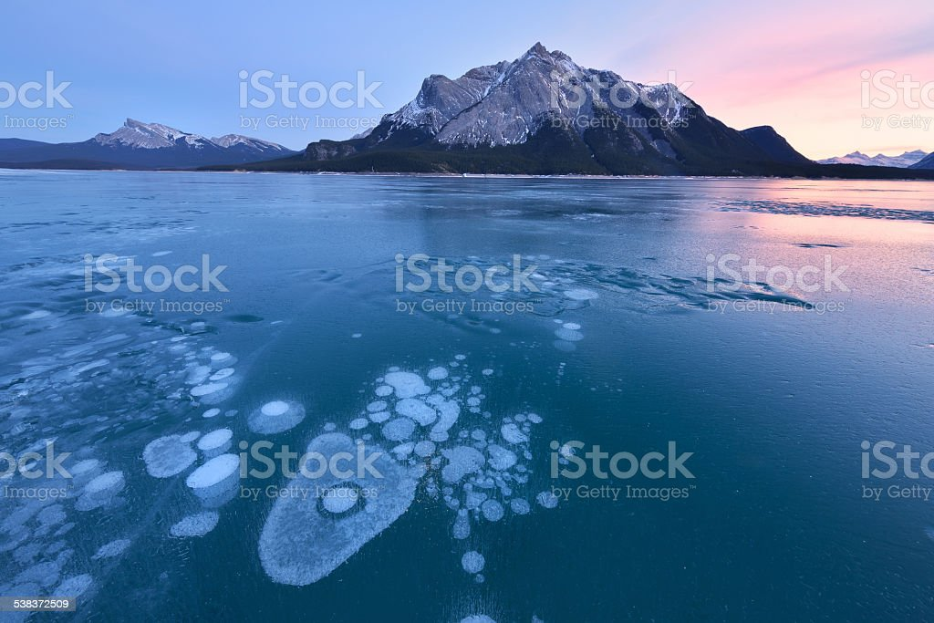 Abraham Lake winter ice bubble stock photo