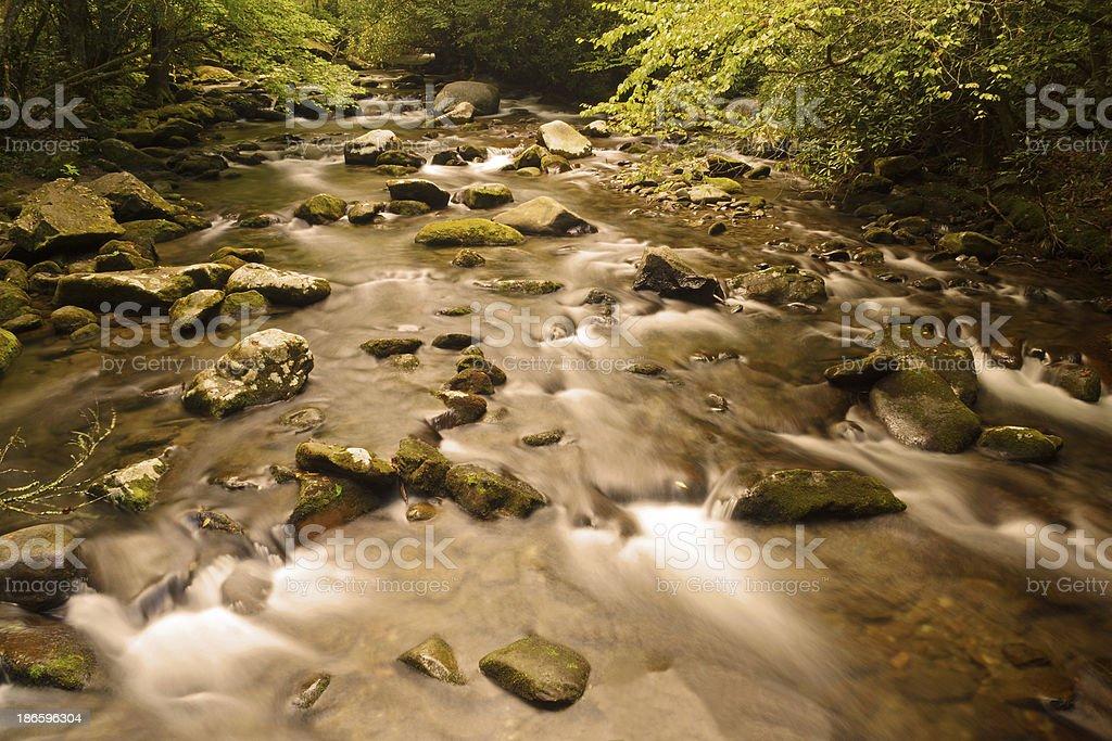 Abrams Creek Great Smoky Mountains National Park royalty-free stock photo