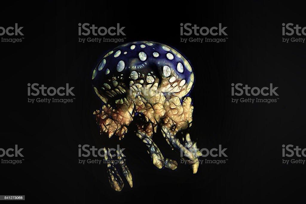 Absinthe Jellyfish stock photo