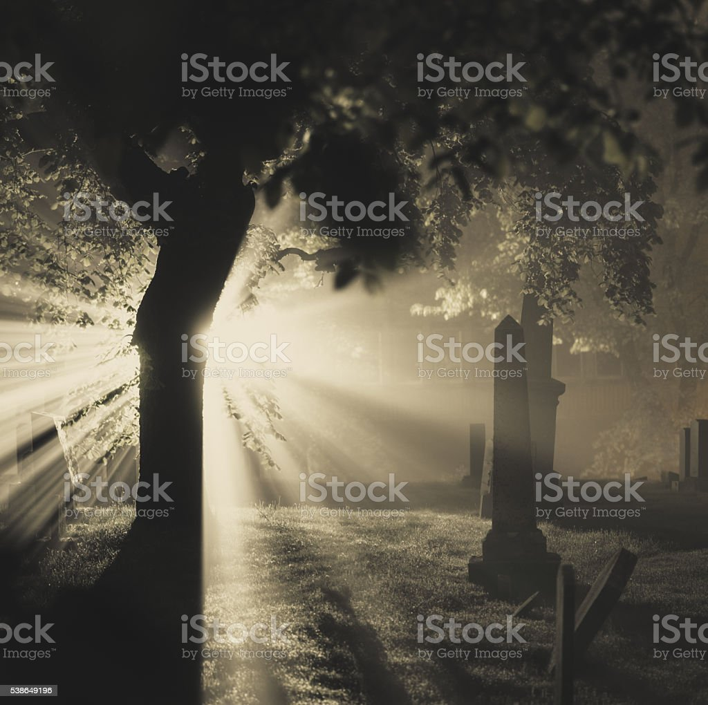 Absorb the Light stock photo