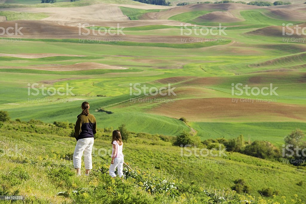 Absorbing the View royalty-free stock photo