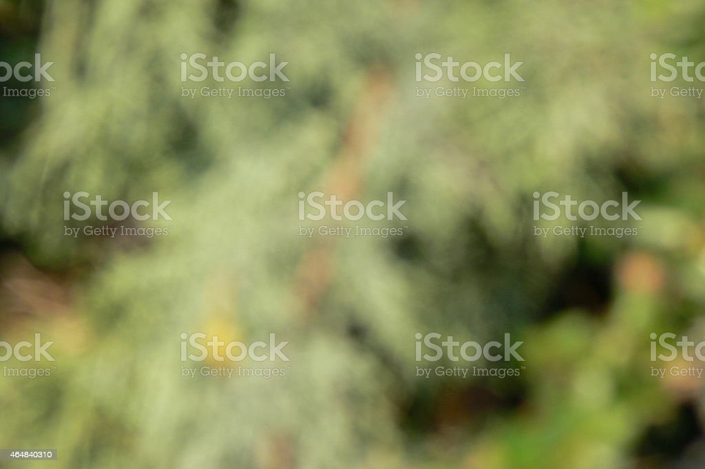 Abstrackt natural background stock photo