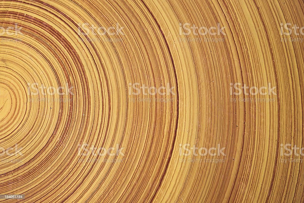 Abstract background of Tree ring or wood log royalty-free stock photo