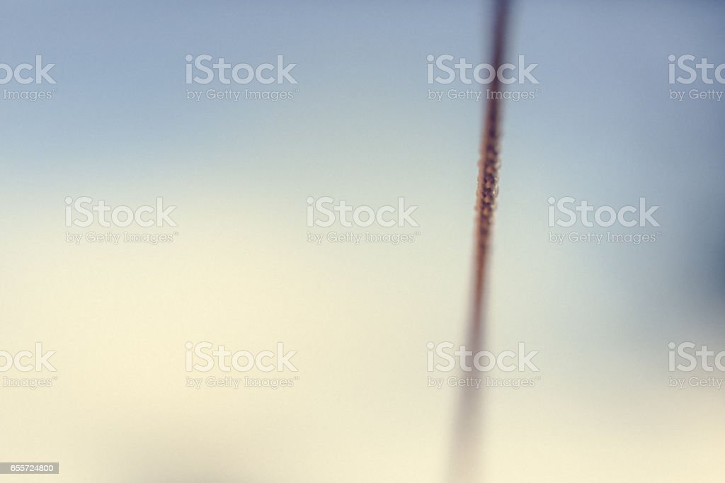 Abstract backgrounds vintage string in shallow focus stock photo