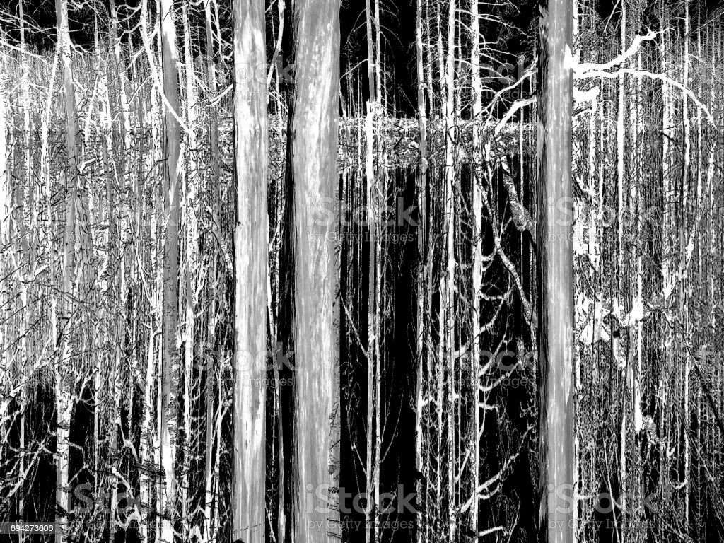 Abstract Black & White Vertical Lines stock photo