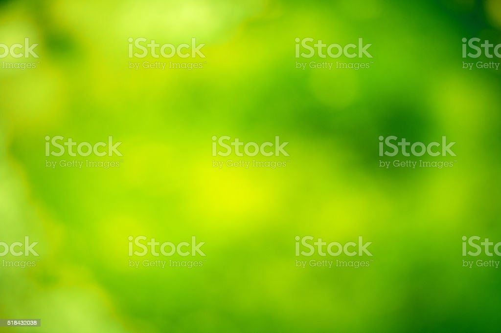 abstract blurred background with a shade of green stock photo