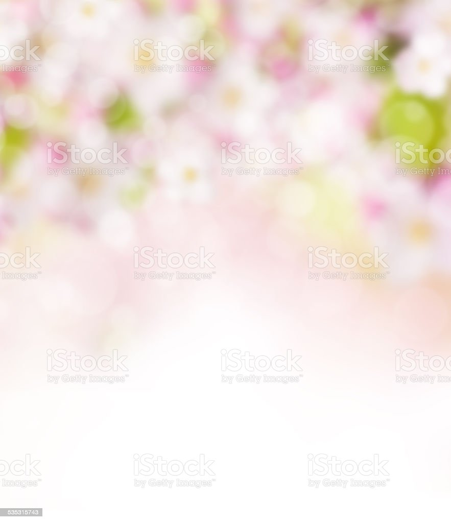 Abstract blurry spring background stock photo