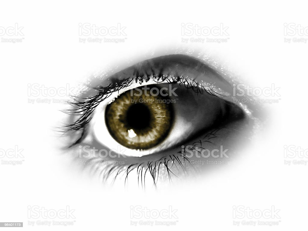 Abstract Brown Eye royalty-free stock photo