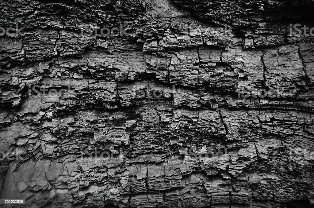 Abstract burn wood background stock photo