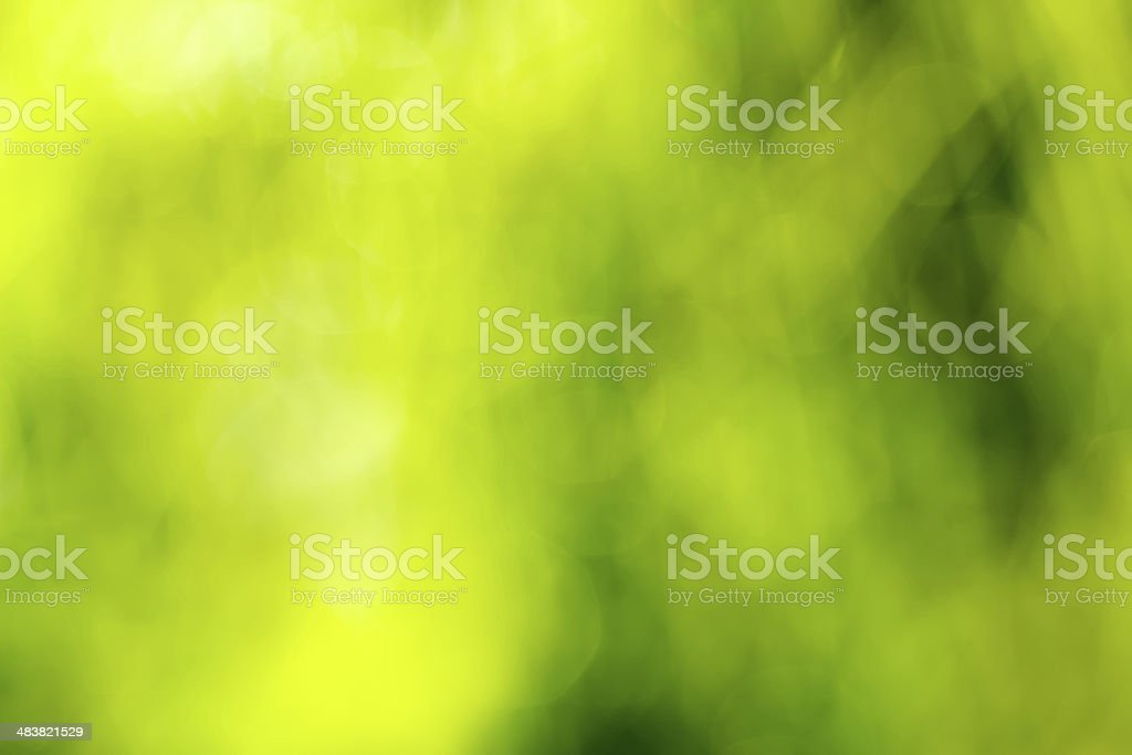 Abstract defocused nature background stock photo