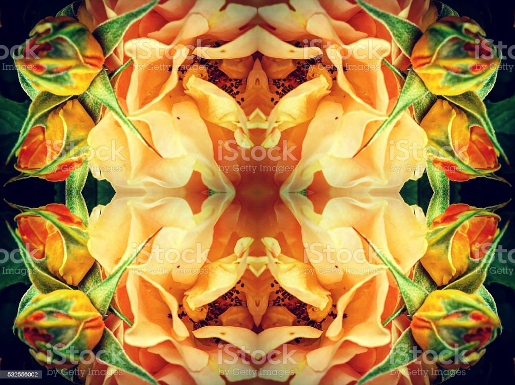 Abstract flower pattern background stock photo