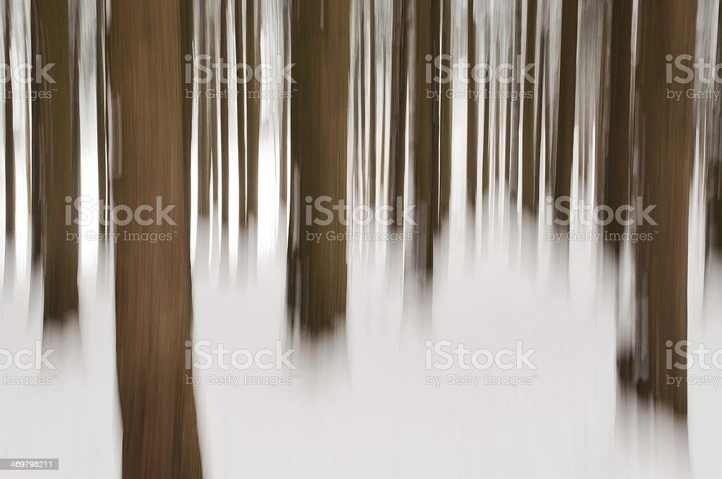 Tło lesie zimą zbiór zdjęć royalty-free