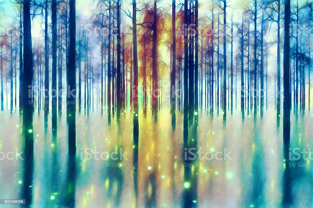 Abstract forest stock photo