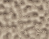 Abstract Geographic Curves Background