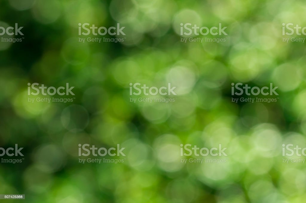 Abstract green bokeh background from leaves. stock photo