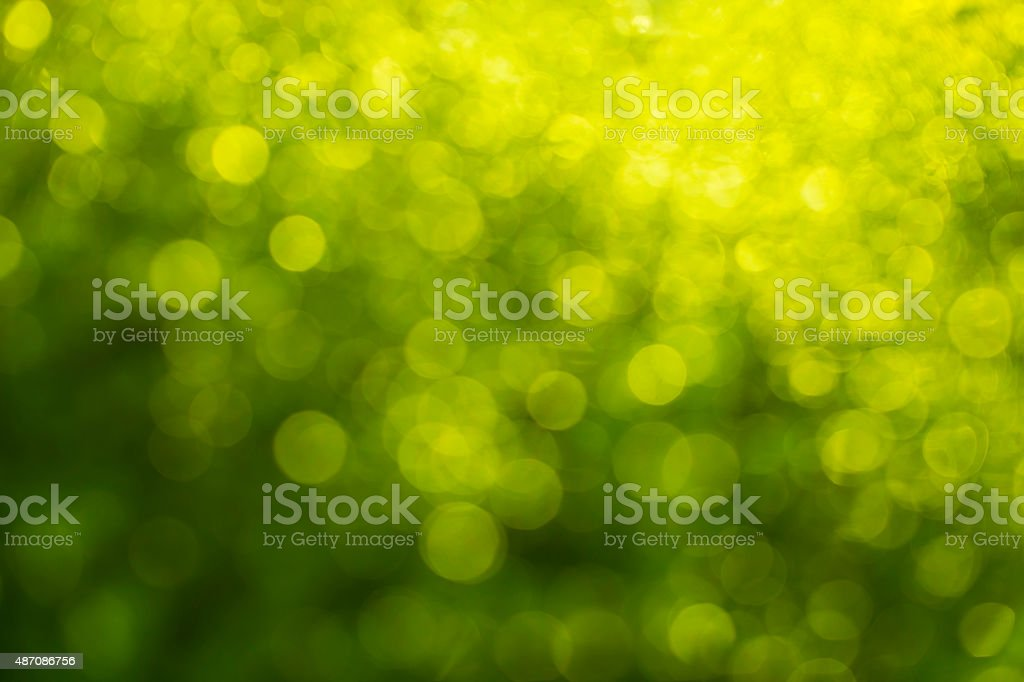 abstract green bokeh for Natural  blurred background stock photo