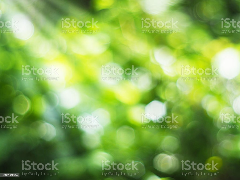 Abstract green bokeh stock photo