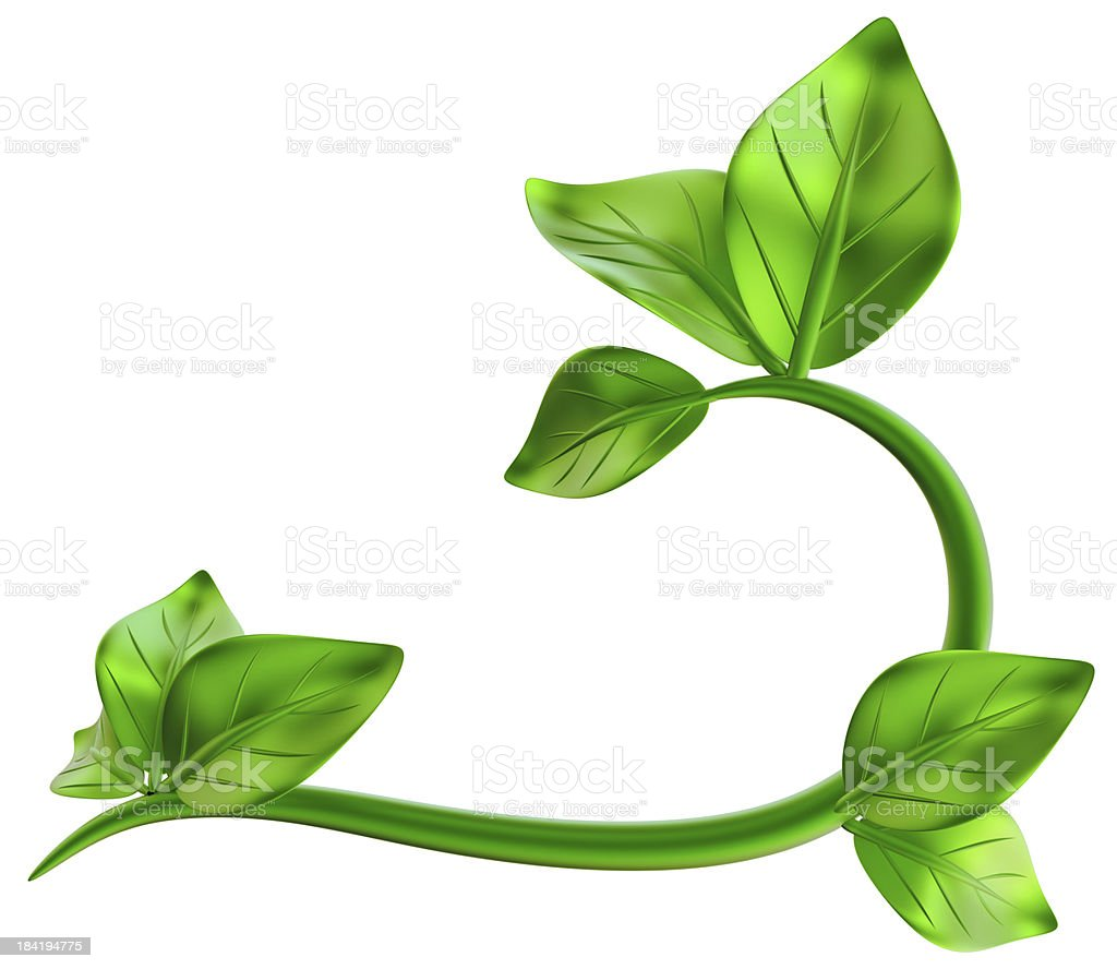 abstract green branch with leafs as decoration royalty-free stock photo